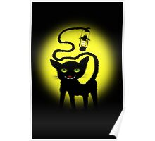 blackcat with light Poster