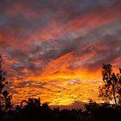 Roaring Sunrise by Paul Manning