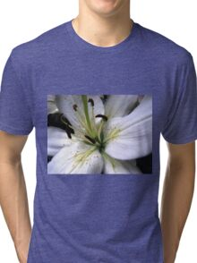 Snow White Lily Petals Tri-blend T-Shirt