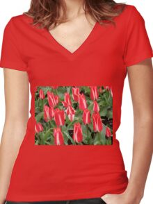 Pinnochios Galore! Colourful Tulips in the Keukenhof Women's Fitted V-Neck T-Shirt