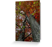 Locked in the darkened world..Made to never last..That's where the dreams you seek are like stories from the past..The leaves will be falling fast Greeting Card