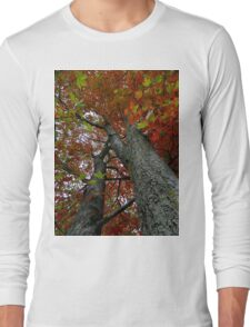 Locked in the darkened world..Made to never last..That's where the dreams you seek are like stories from the past..The leaves will be falling fast Long Sleeve T-Shirt