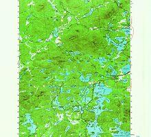 New York NY Saint Regis 129310 1955 62500 by wetdryvac