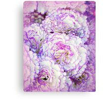 Frilly Carnations Canvas Print