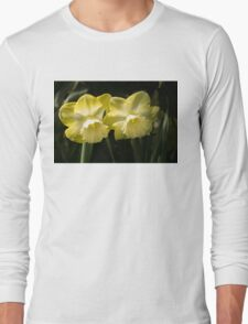 Sunny Pair - Glowing Mellow Yellow Narcissus Blooms Long Sleeve T-Shirt