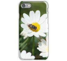 Fly on a Daisy iPhone Case/Skin