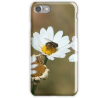 Red Fly on a Daisy iPhone Case/Skin
