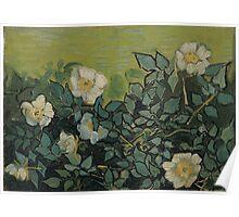 Vincent Van Gogh - Wild roses, Famous Painting. Impressionism. Van Gogh Poster