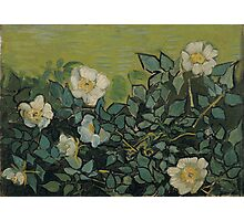 Vincent Van Gogh - Wild roses, April 1890 - May 1890 Photographic Print