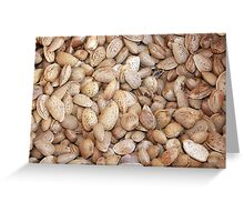 Harvested Almonds Greeting Card