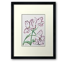 Full Blown Tulips Framed Print