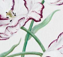 Full Blown Tulips Sticker