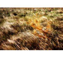 Multiple exposure Photographic Print
