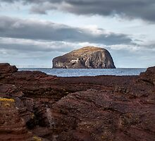 Bass Rock in Scotland by Jeremy Lavender Photography