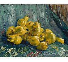 Vincent Van Gogh - Still Life with Quinces, 1888 - 1889 Photographic Print