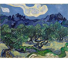 Vincent Van Gogh Post - Impressionism Oil Painting, The Olive Trees, 1889 Photographic Print