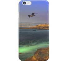 Searching ~ Sunset Cliffs, California ~ United States iPhone Case/Skin