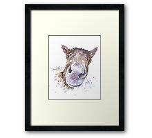 Master Donkey Framed Print