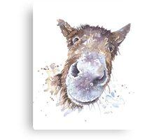 Master Donkey Canvas Print