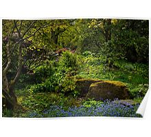 The Fairy Dell. Poster