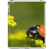 Ladybird close up on a plant iPad Case/Skin