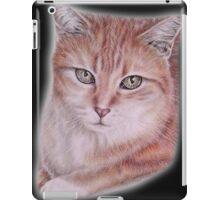 Orange Tabby Cat Pet Drawing iPad Case/Skin