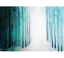 Watercolor Forest Photographic Print