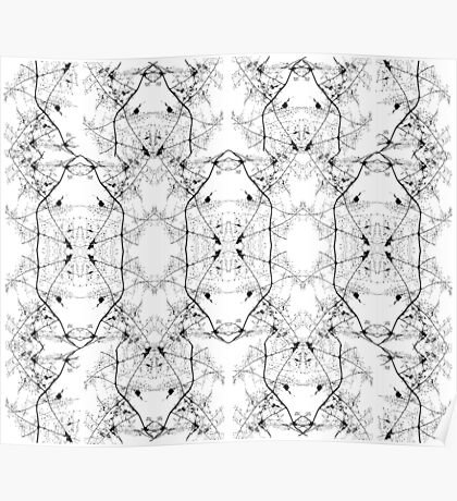 White and Black Abstract Pattern Poster