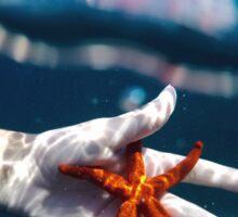 Ocean Starfish  Sticker