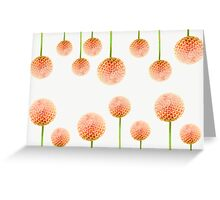 Dahlia  Random Greeting Card