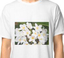 White & Yellow Plumeria Tree Classic T-Shirt