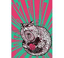 Hamster Lovin' Photographic Print