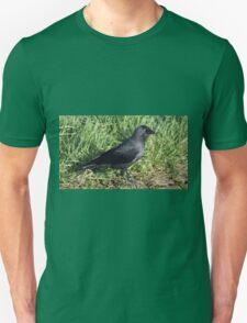 Jackdow. T-Shirt