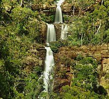 East Dandongadale Falls by Kevin McGennan
