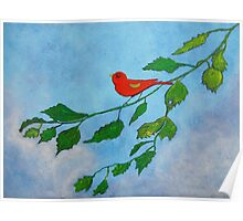Little red bird acrylic painting Poster