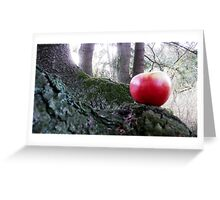 In the forest . Greeting Card