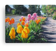 Street Tulips Canvas Print