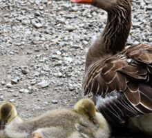 Mother Goose and Goslings Sticker