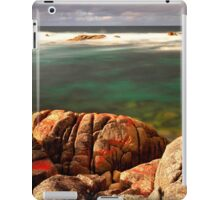 Late Afternoon iPad Case/Skin