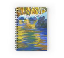Golden Waters And Stones. Lynn Creek Spiral Notebook