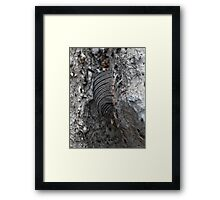 NS Armored Shade ONFXE© Framed Print