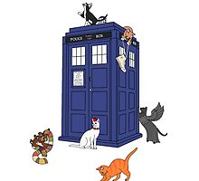 Doctor Who: Cats by oscardarla