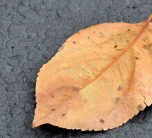 One Leaf Sticker