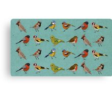 British Garden Birds Canvas Print
