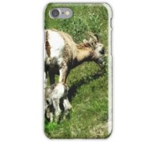 New Born Sheep iPhone Case/Skin