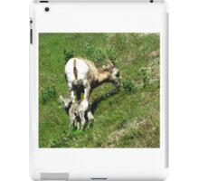 New Born Sheep iPad Case/Skin