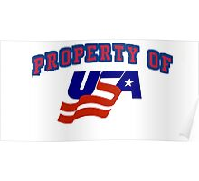 PROPERTY OF USA Poster