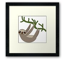 Curious sloth Framed Print