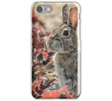 Alert and Eating iPhone Case/Skin