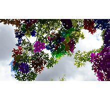 Colour Stained Sky View Photographic Print
